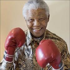 Mandela older boxer