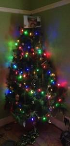 Mitch Fahey Xmas Tree