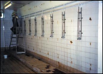 solution Shower Block-Wall and Floor Repair